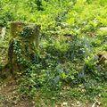 Les Rocs de Cremaussel - 11/05/2008