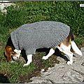 Vicky et son pull irlandais (2)