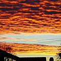 Lever soleil 0611153
