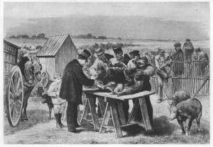 800px_Louis_Pasteur_in_Pouilly_le_Fort__Illustration___1881_