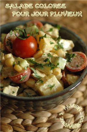 Salade_poulet__ananas__mais__concombre__tomate__curry__coriandre_1