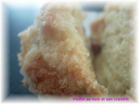 muffinnoix