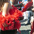 Mon truc en plumes au carnaval de nantes le 12 avril 2015 (1)