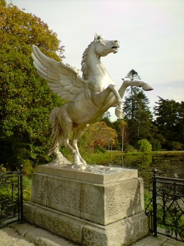 One of the gorgious Winged Horses
