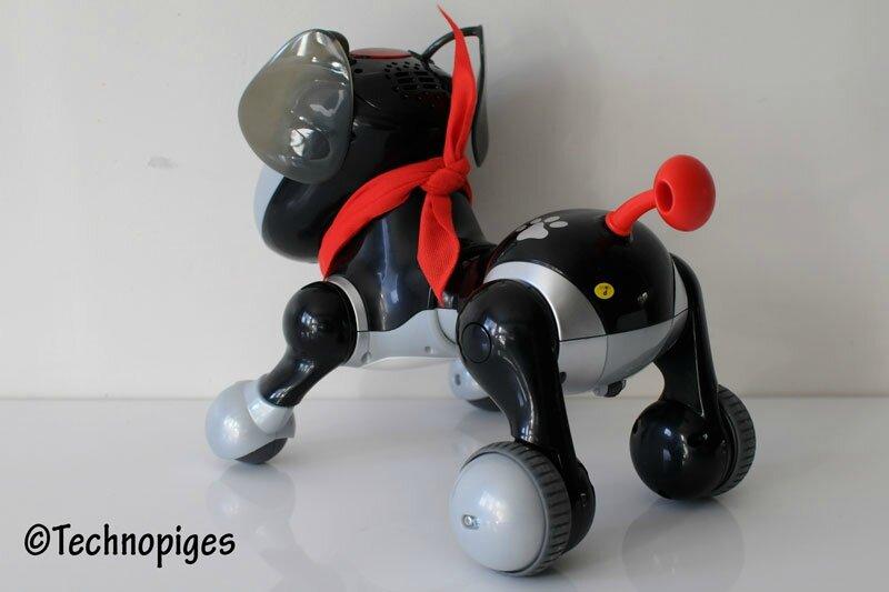 Kidi_Doggy7