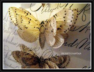SECRETS D'ANTAN 052