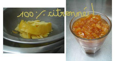100_citronn_