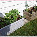 Au jardin!!!!