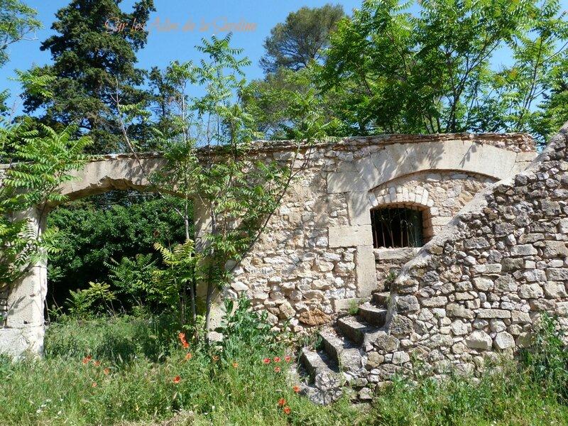 Montlobre ruines