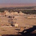 Palmyre argentique 2005