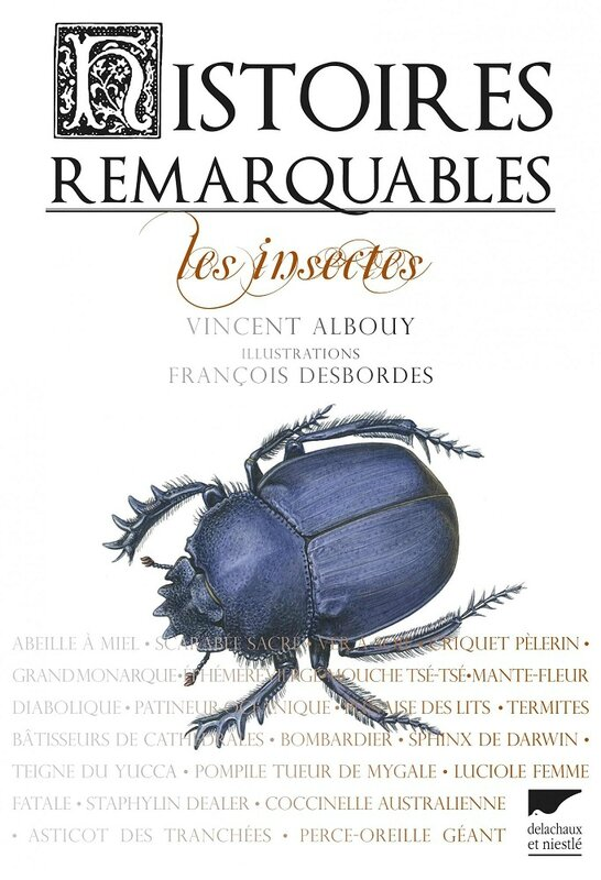 HISTOIRES REMARQUABLES LES INSECTES