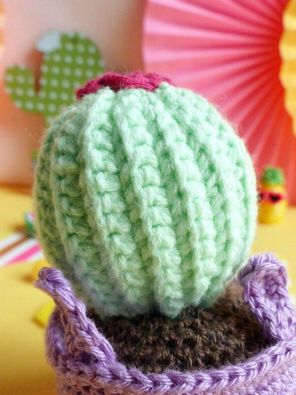 05-lapin-crochet-amigurumi-cactus-kawaii
