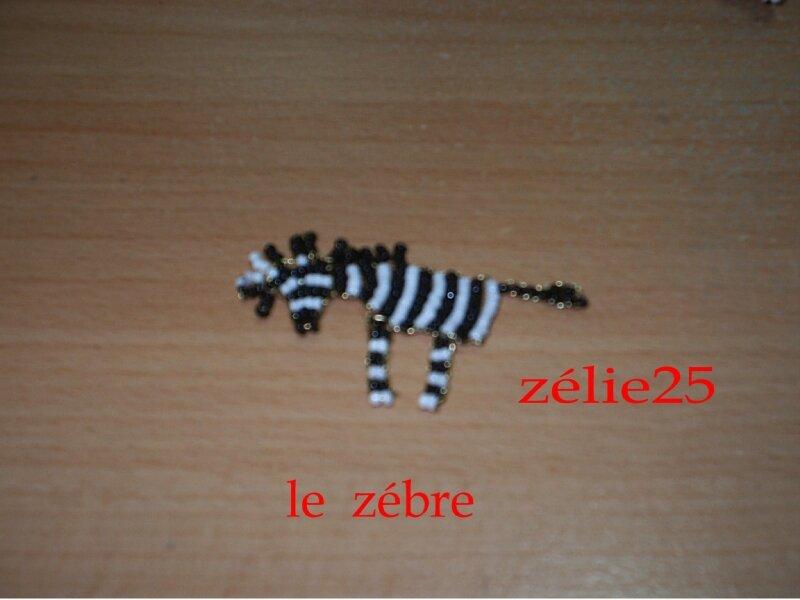 le zebre