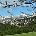 Chateau julien - randonnée printemps vercors
