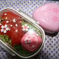Sakura 'o bento iii