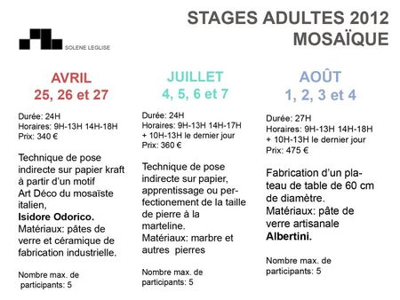 Stage-adulte2012BLOG