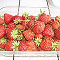 Melon et fraises
