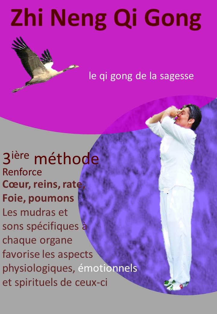 les ateliers QI GONG de janvier 2020 à ST GIRONS et PAMIERS- Ariège
