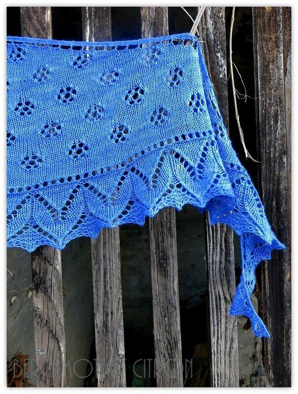 premices-bleu03