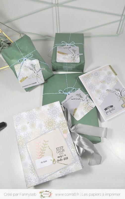 ensemble cadeau fannyseb 11 collection béatrice papiers COM16