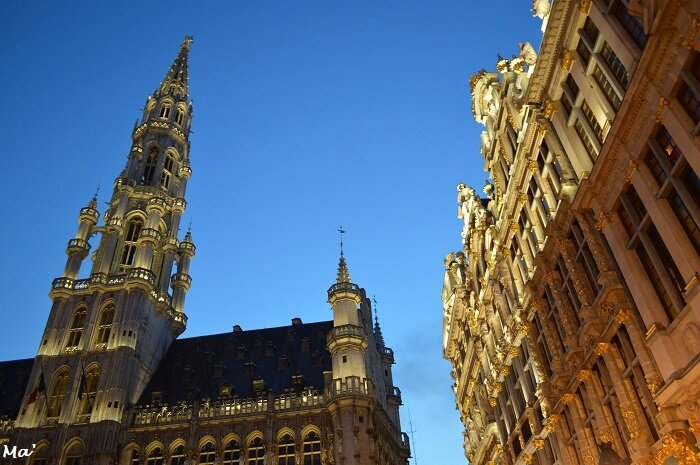 180113_BXL_Grand_Place_8