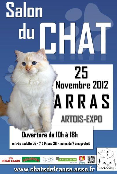 afficheacf_arras2012_web