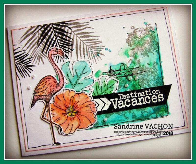 Sandrine VACHON Défi 545 PCC