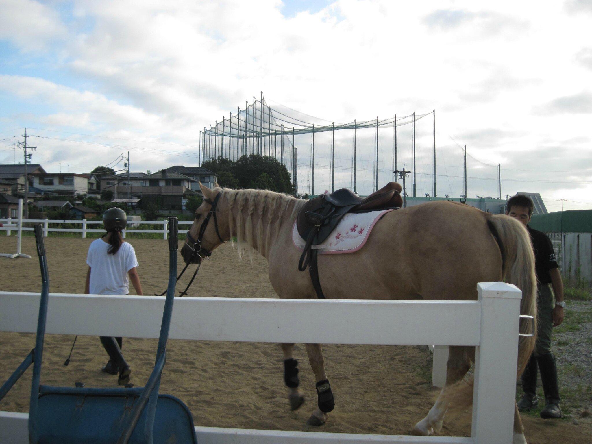 a cheval au japon :)
