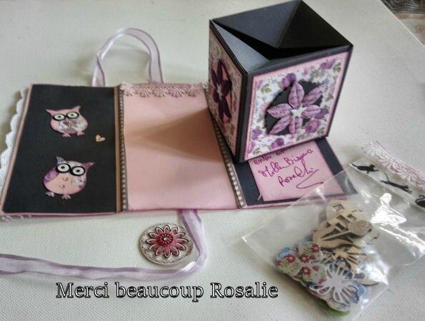 6a DSC_0334 reçus de rosalie