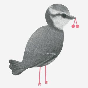 audreyjeannecp oiseau