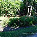Bois-de-Coulonge-Arboretum-20