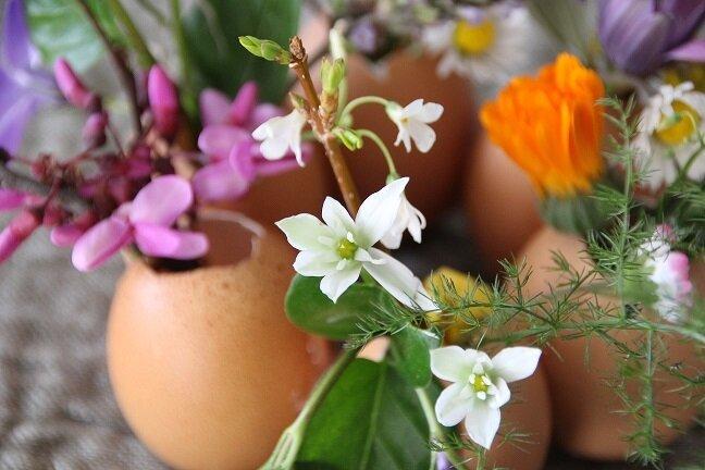 diy_deco_paques_vase_coquille_oeuf_fleurs