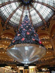Paris Nov 2012 030
