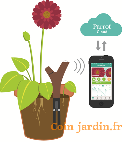 Flower-Power-Parrot-application-apple-android-1_coin-jardin