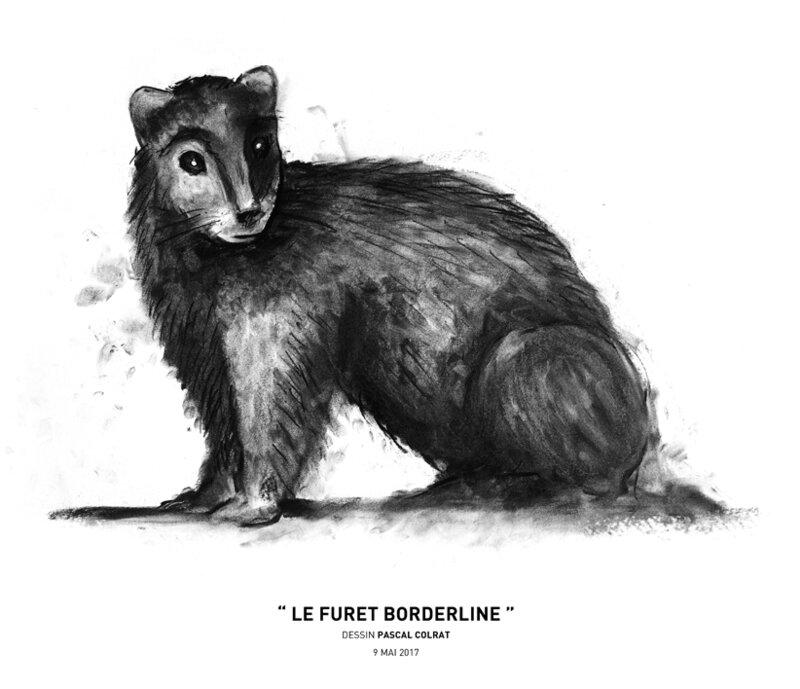 __le_furet_borderline__