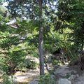 parc momijidami miyajima (11)