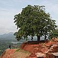 Sri_Lanka_154