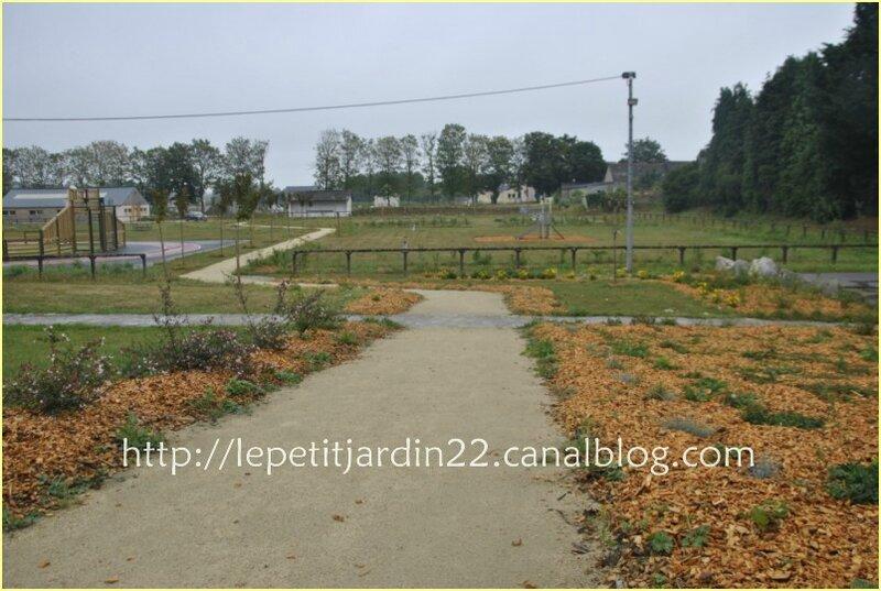_DSC3049 [le petit jardin des écoliers]