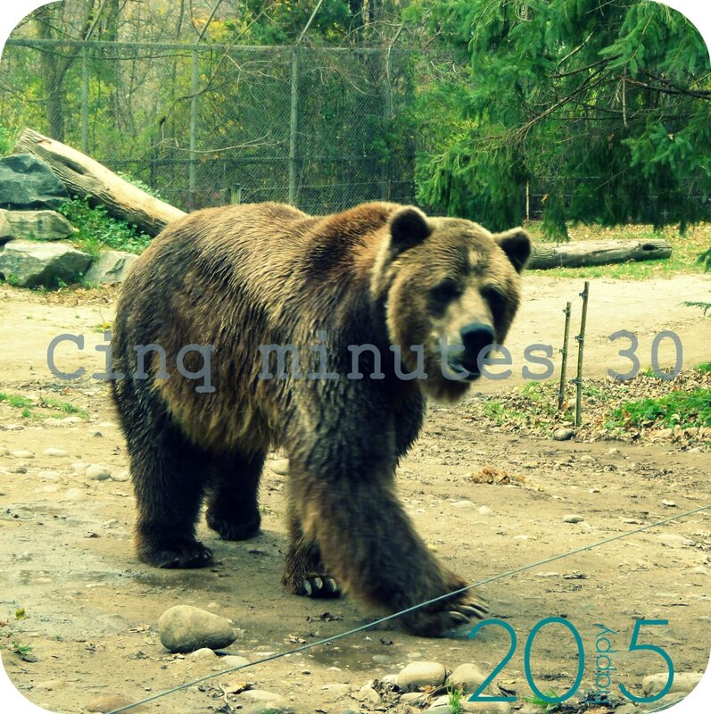 Ours-2016