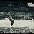 La mer : maurice de guerin ... extraits