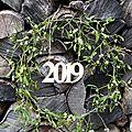 2019 commence sous le gui