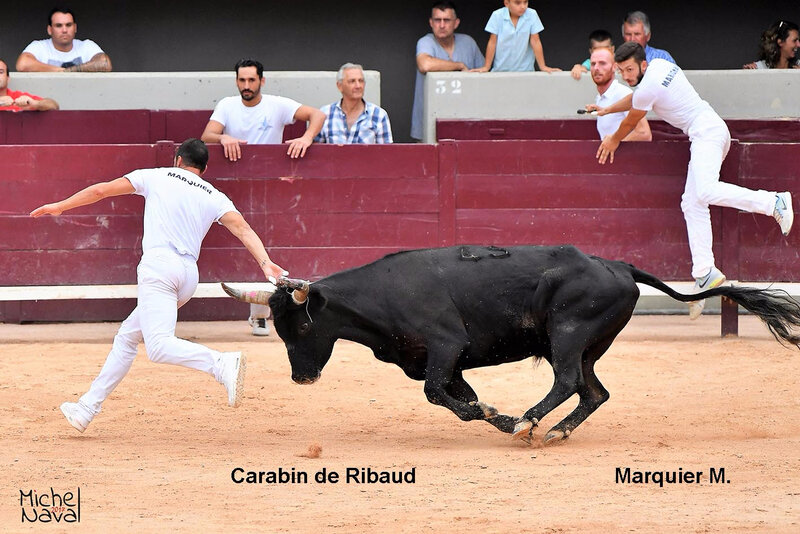 ISTRES 27