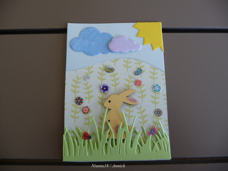 Lapin S (3)