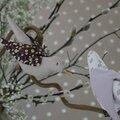 Nos oiseaux d'intérieur