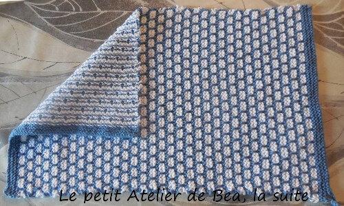 ap torchon bleu 2