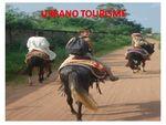 Randonn_es___cheval_au_B_nin