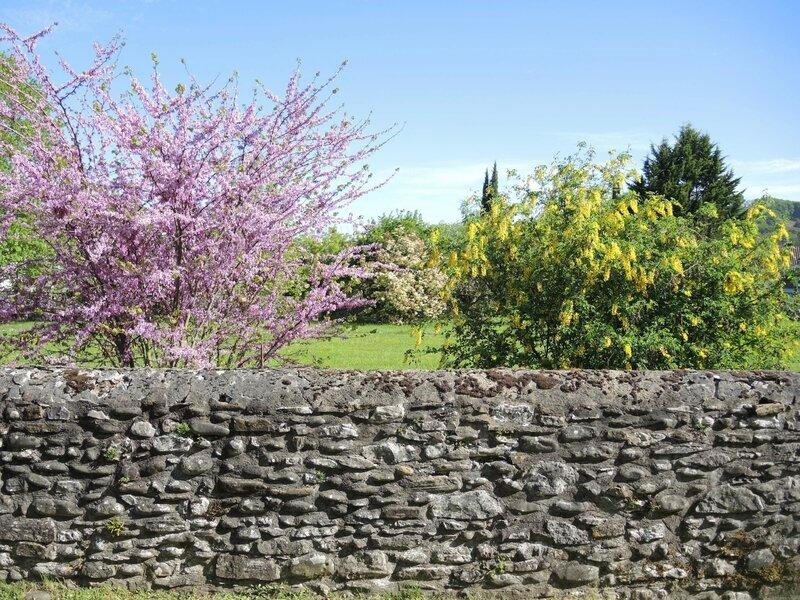 Laàs, fleurs de printemps