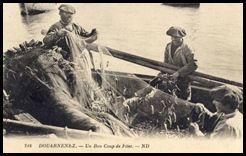 Pêche sardinier Douarnenez