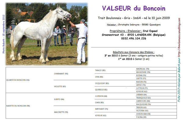 Valseur_du_Boncoin
