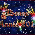 Bonne année 2013!!